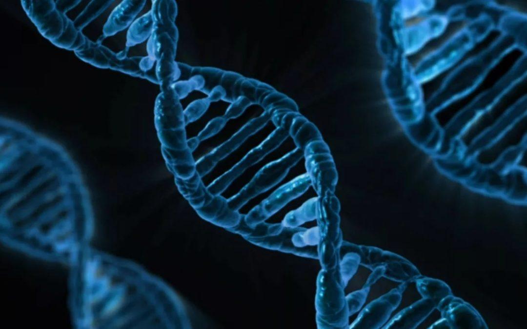 """Futuro da Medicina passa obrigatoriamente pela genética"", defende Neurogeneticista baiana"